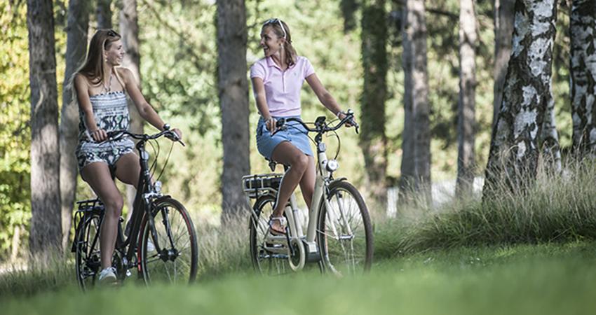 oxford elektrische fietsen